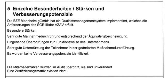 Auditbericht 11/2020